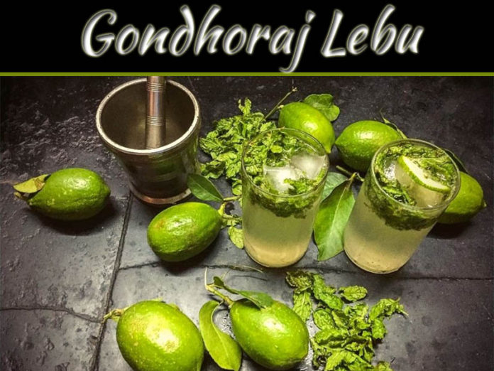 Gondhoraj Lebu: The Secret Passed Down Through Generations!
